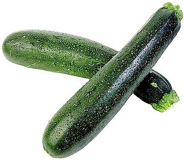 Comment et quand planter la courgette ?
